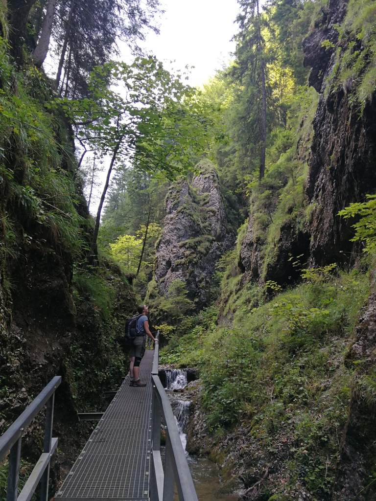 Rie in the gorge